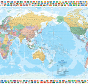 WLD007_World_with_Flags_Small