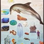 KID008_The_Ocean